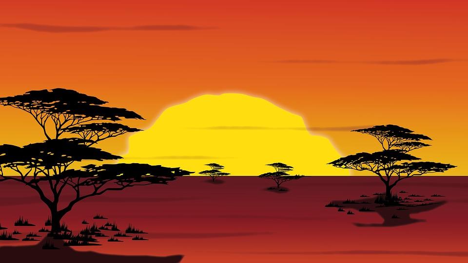 Il re leone: il live action del cartone animato disney avrà due