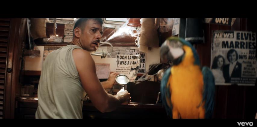 screnn youtube - gabbani pachidermi e pappagalli