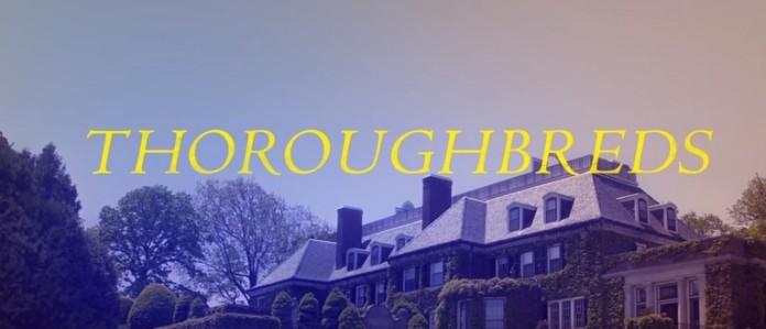 thoroughbreds