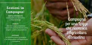 Volantino campagna che riconosca l'agricoltura contadina